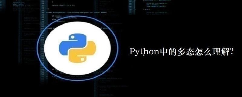 Python中的多态怎么理解?