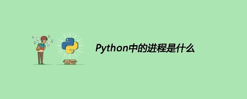Python中的进程是什么