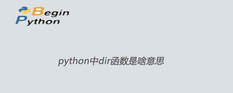 python中dir函数是啥意思