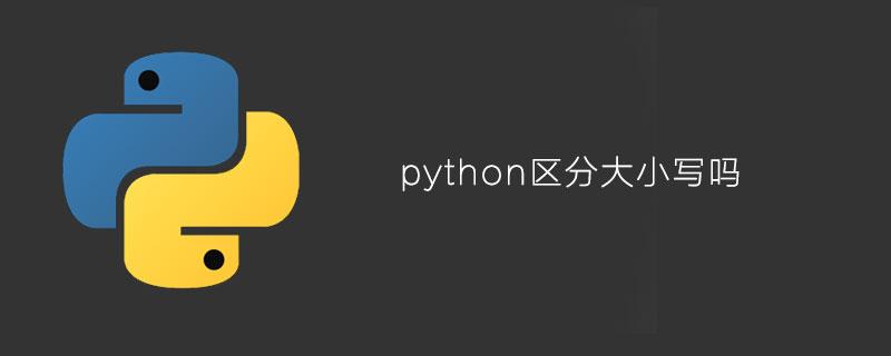 python区分大小写吗