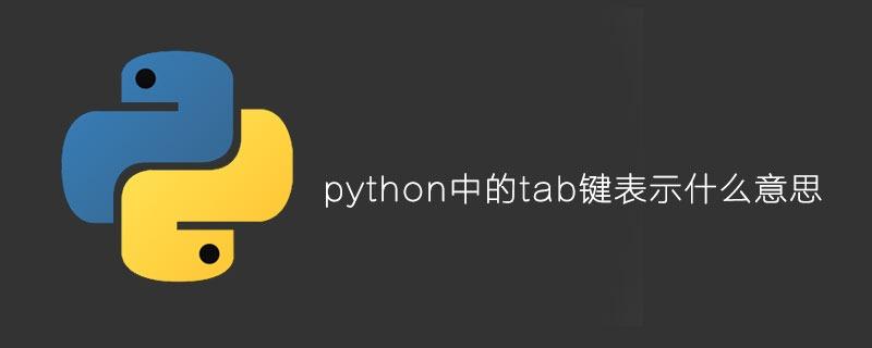 python中的tab键表示什么意思