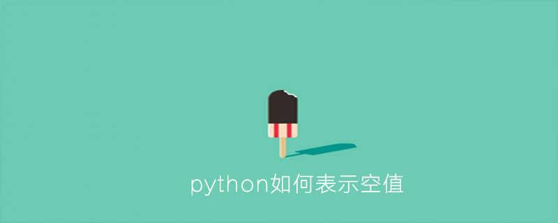 python如何表示空值