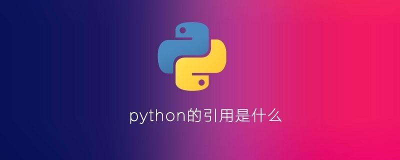 python的引用是什么