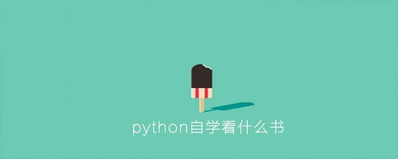 python自学看什么书