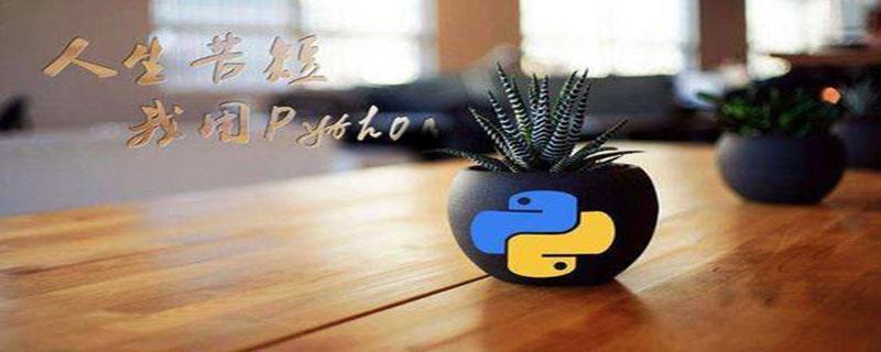 后端php和python学哪个