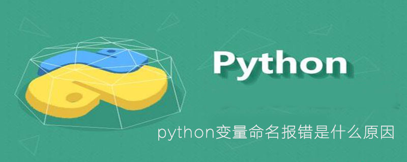 python变量命名报错是什么原因