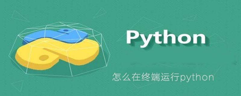 怎么在终端运行python