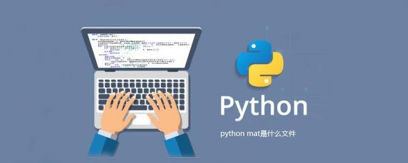python mat是什么文件