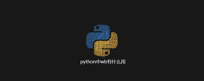 python中wb有什么用