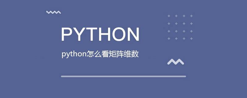 python怎么看矩阵维数