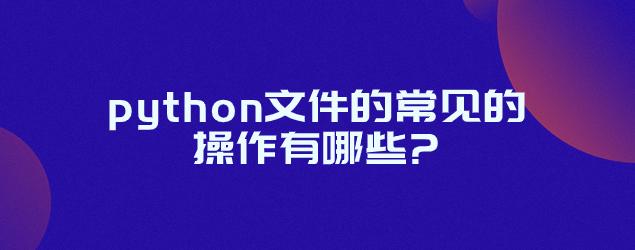 python文件的常见的操作有哪些?