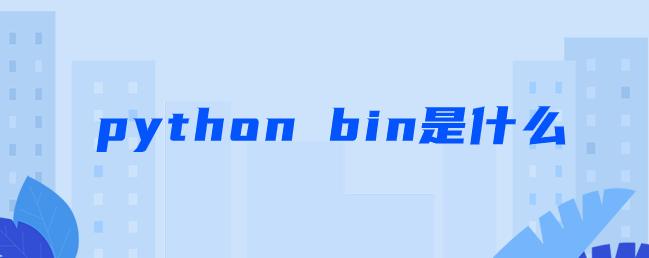 python bin是什么【python bin函数文件处理】