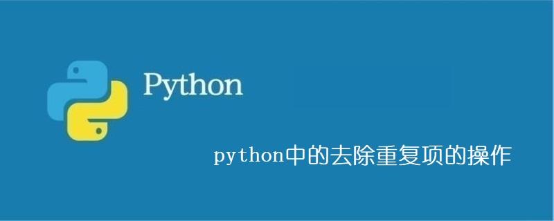python中的去除重复项的操作