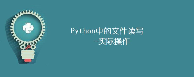 Python中的文件读写-实际操作