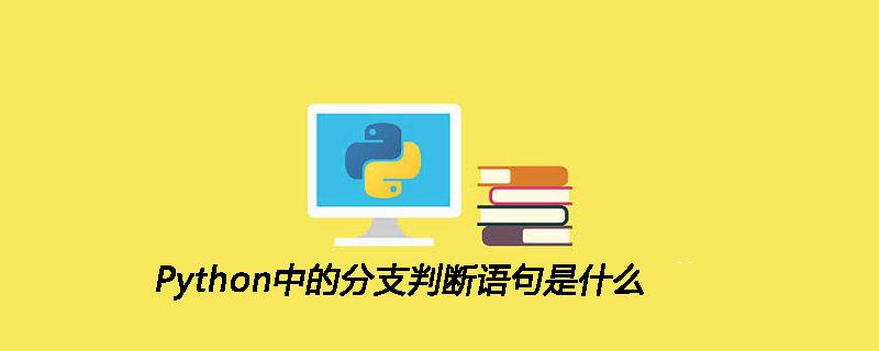 Python中的分支判断语句是什么