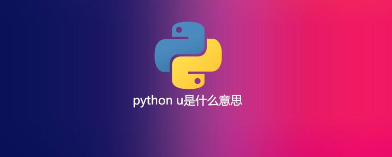 python u是什么意思