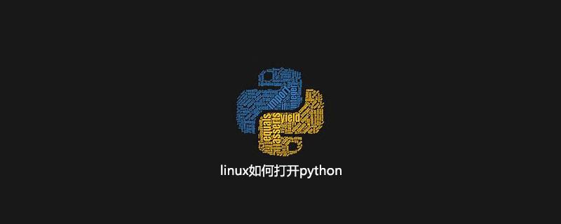 linux如何打开python