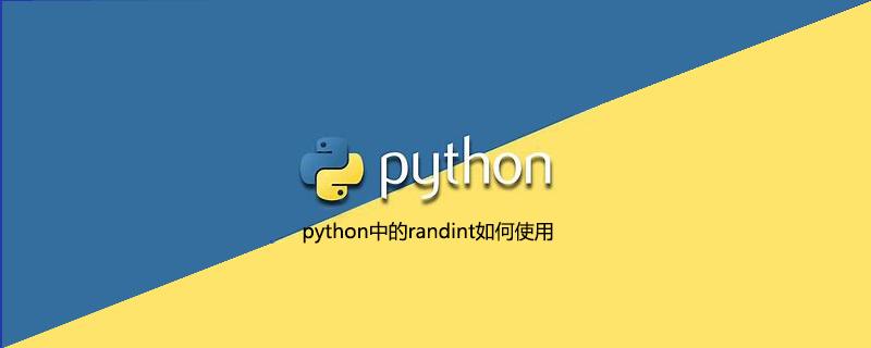 python中的randint如何使用