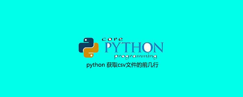 python 获取csv文件的前几行