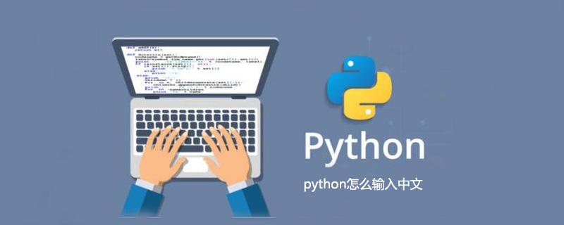 python怎么输入中文