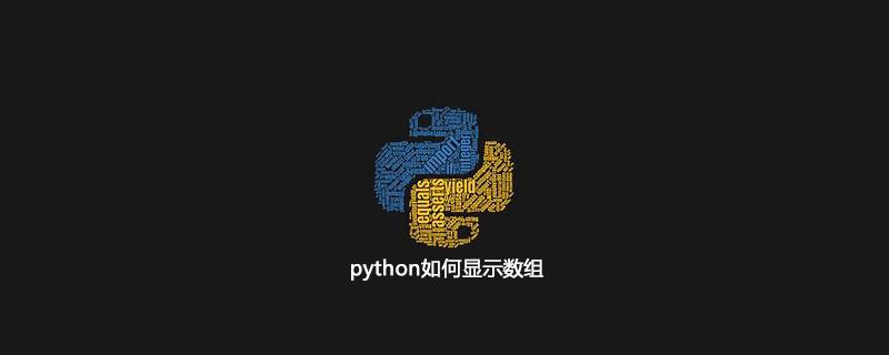 python如何显示数组