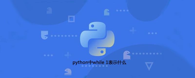 python中while 1表示什么
